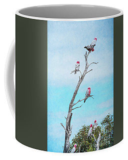 Galahs On The Lookout Coffee Mug