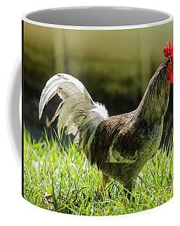Gallo Coffee Mug