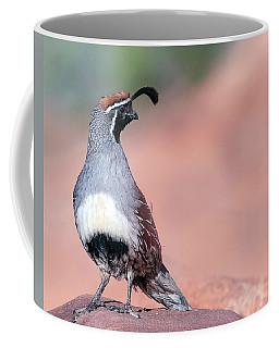 Gambels Quail Three Coffee Mug