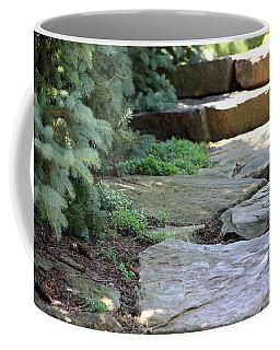 Garden Landscape - Stone Stairs Coffee Mug