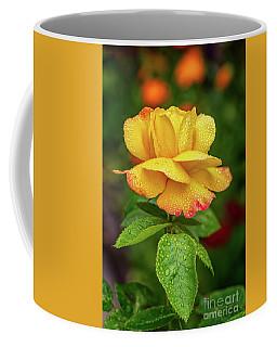 Gloria Coffee Mugs