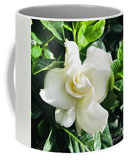 Gardenia Closeup Square Coffee Mug
