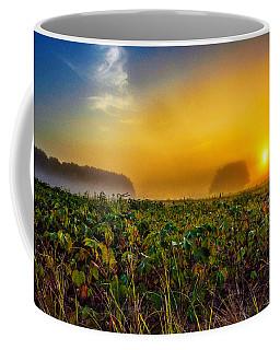 Gauzey Cotton  Coffee Mug