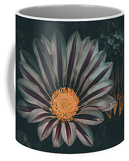 Gazania Gaze Coffee Mug