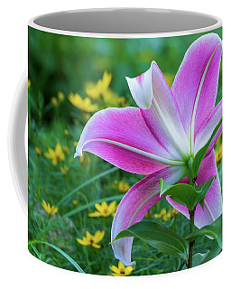 Gazing The Stars And Moonbeams Coffee Mug