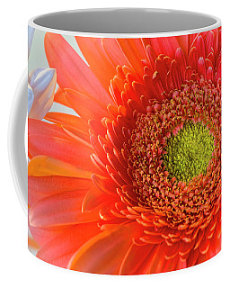 Gerbera Gorgeous  Coffee Mug