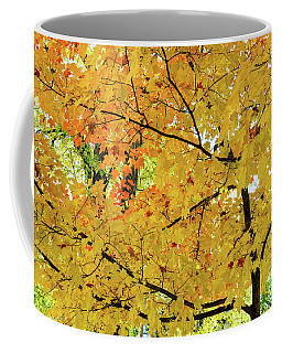 Getting Lost On Mapleton Street Coffee Mug