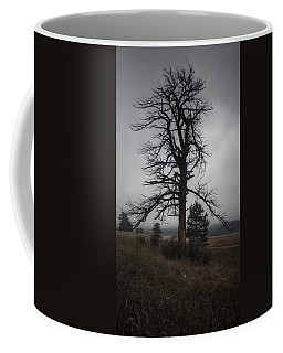 Coffee Mug featuring the photograph Ghostly Snag by Dan Miller