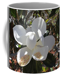 Gigantic White Magnolia Blossoms Blowing In The Wind Coffee Mug