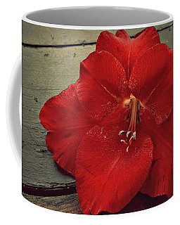 Coffee Mug featuring the photograph Glad by Patricia Strand