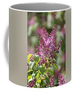 Glorious Lilacs Coffee Mug