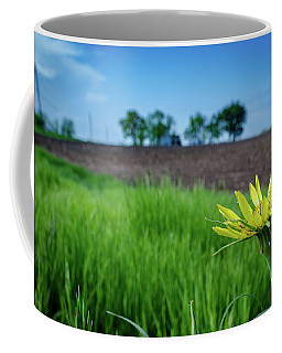 Goat's Beard On Nelson Farm II Coffee Mug