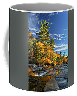 Coffee Mug featuring the photograph Golden Autumn Light Nh by Michael Hubley