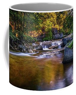 Golden Calm Coffee Mug