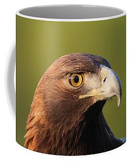 Coffee Mug featuring the photograph Golden Eagle 5151801 by Rick Veldman