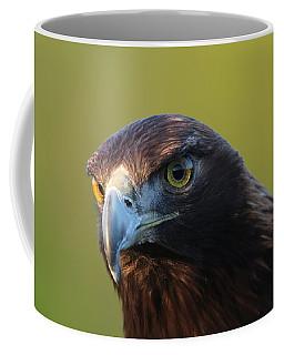 Coffee Mug featuring the photograph Golden Eagle 5151802 by Rick Veldman