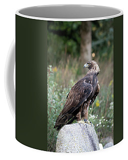 Coffee Mug featuring the photograph Golden Eagle On Rock 92515 by Rick Veldman