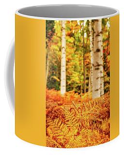 Golden Ferns In The Birch Glade Coffee Mug