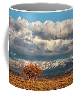 Golden Hour Gamble Oaks Coffee Mug