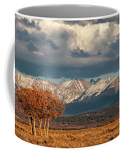 Golden Hour Gamble Oaks Coffee Mug