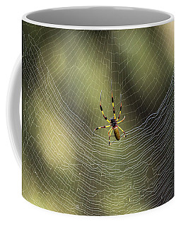 Golden Silk Orb Weaver Coffee Mug