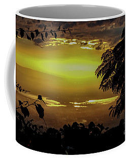 Golden Sunset On Strawberry Hill Coffee Mug