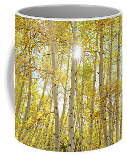 Coffee Mug featuring the photograph Golden Sunshine On An Autumn Day by James BO Insogna