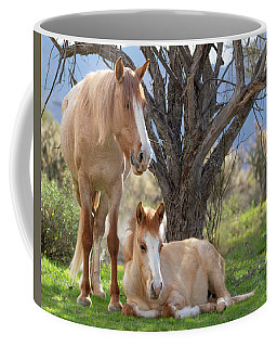Coffee Mug featuring the photograph Good Mama by Mary Hone