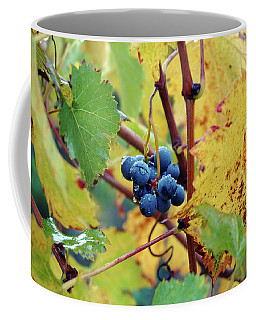 Coffee Mug featuring the photograph Grapes In Tuscany by Mark Duehmig