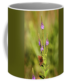 Gray Copper On Blazing Star Coffee Mug