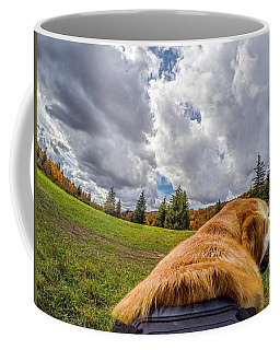 Coffee Mug featuring the photograph Grayson Highlands Color By Jackson by Matthew Irvin