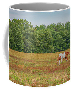 Grazing Paint Horse Coffee Mug