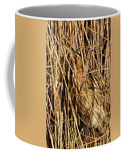 Great Bittern Coffee Mug