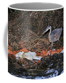 Coffee Mug featuring the photograph Great Blue Heron by Debbie Stahre