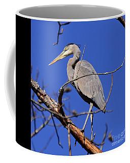 Great Blue Heron Strikes A Pose Coffee Mug