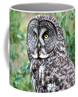 Coffee Mug featuring the photograph Great Gray Owl by Ann E Robson