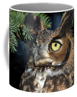 Coffee Mug featuring the photograph Great Horned Owl 10181801 by Rick Veldman