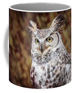 Great Horned Owl Portrait Coffee Mug