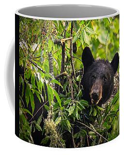Great Smoky Mountains Bear - Black Bear Coffee Mug