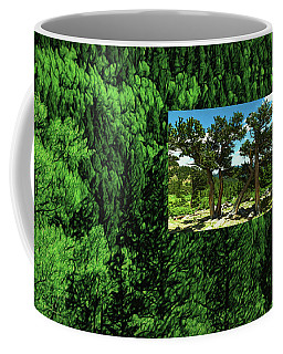 Coffee Mug featuring the photograph Green As Ever Forest by Mike Braun