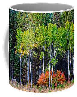 Green Aspens Red Bushes Coffee Mug