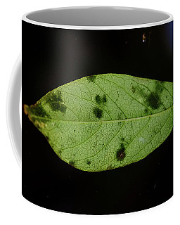 Green Leave In Clear Ice Coffee Mug