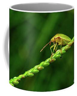 Grass Bridge Coffee Mug