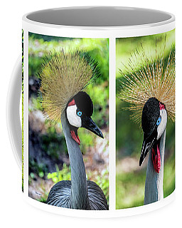 Grey Crowned Crane Gulf Shores Al Collage 1 Coffee Mug