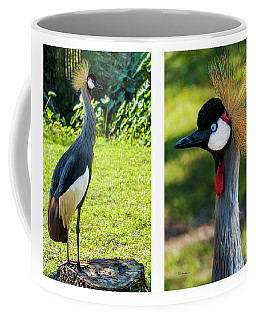 Grey Crowned Crane Gulf Shores Al Collage 10 Diptych Coffee Mug
