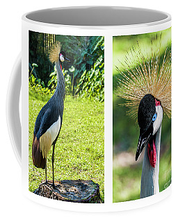 Grey Crowned Crane Gulf Shores Al Collage 8 Diptych Coffee Mug