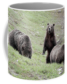 Coffee Mug featuring the photograph Grizzly 610 And Cubs by Ronnie and Frances Howard
