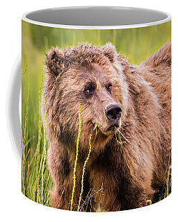 Grizzly In Lake Clark National Park, Alaska Coffee Mug