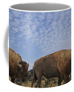 Group Of Bison Walking Against Rocky Mountains  Coffee Mug