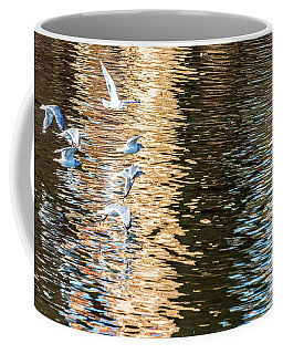 Coffee Mug featuring the photograph Gulls Over Reflections by Kate Brown